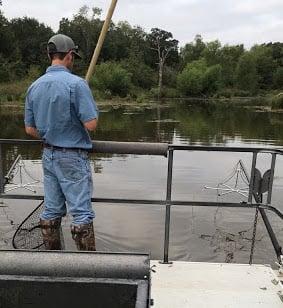 Biologist conducting an electrofishing survey