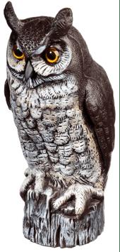 Great-horned-owl-decoy-1