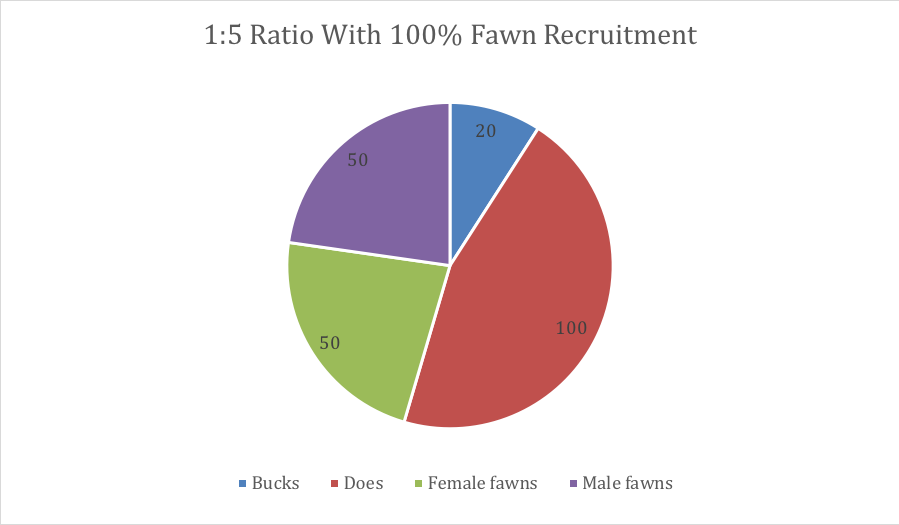 1-to-5 Ratio with 100% Fawn Recruitment