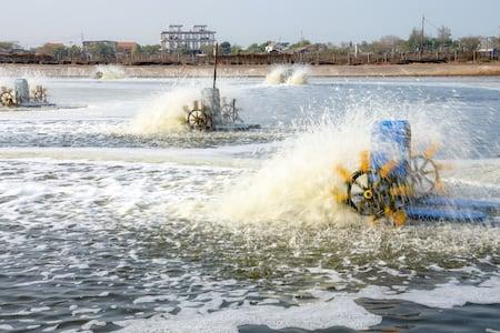 fish-farm-waterwheels