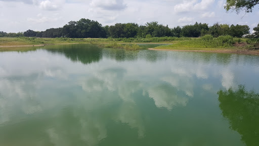 Fertilized pond