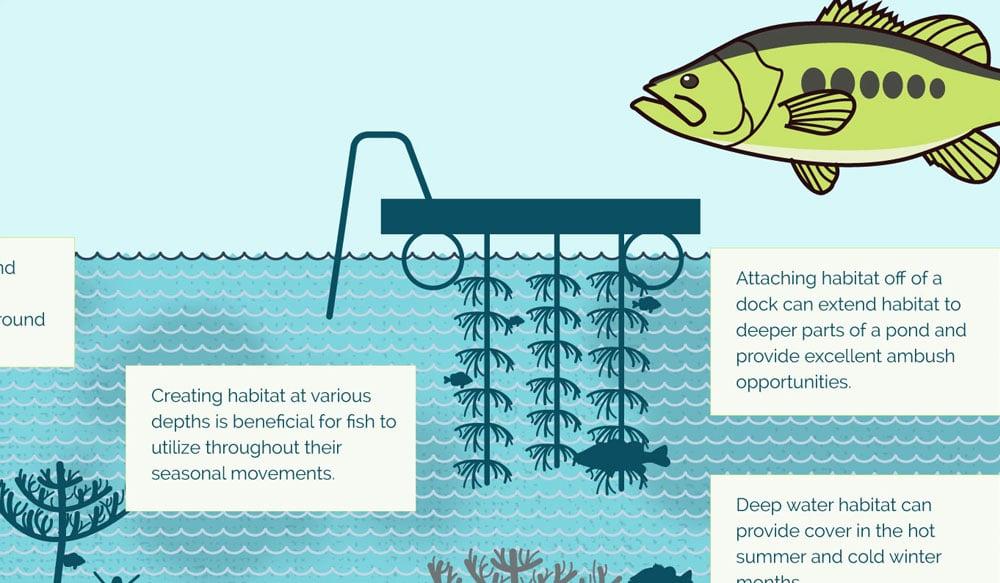 Designing the Perfect Habitat Infographic