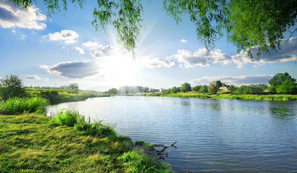 beautiful healthy pond in texas